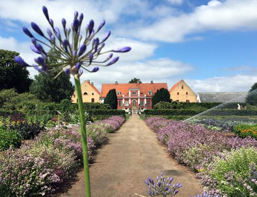 Må bättre med Mindfulness – Öka din livslust! Mindfulnesskurs på Katrinetorp Landeri i Malmö